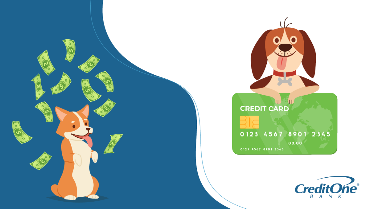Explaining Pet Credit Cards
